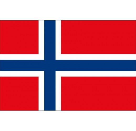 Norwegian flag 20*30